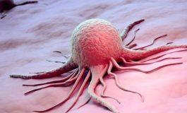 Շոտլանդացի գիտնականները պարզել են քաղցկեղի առաջացման հիմնական պատճառը