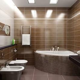 профессиональный ремонт в ванной