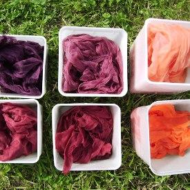 Säurefarben gefärbt auf Organza