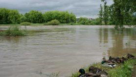 záplavy 2013-Berounka