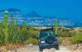 Mexico Domestic Travel