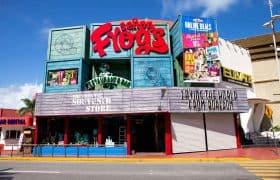 Cancun - Senor Frog's restaurant and bar at Zona Hotelera