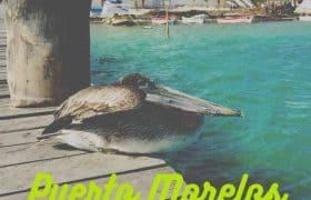 Puerto Morelos What To Do Pinterest 3 EN