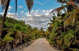 Road to Punta Allen in Sian Kaan, Mexico