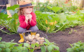 Mit sechs coolen Gartentrends den Garten verschönern