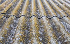 Alte Faserzementplatten bedeckt mit Flechten und Schmutz