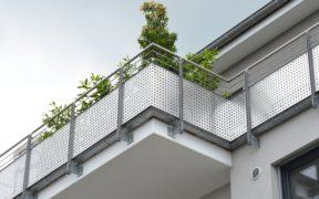 Pflanzen sorgen für einen Sichtschutz auf dem Balkon