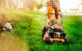 Ein Mann bei der Rasenpflege in seinem Garten