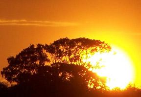 Sunsetting-v1