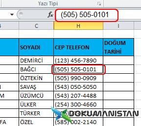 Biçim Verilerini Excele kopyalama kontrolü