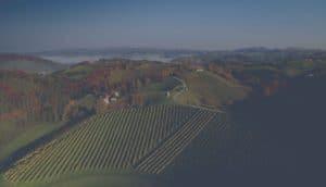 Herbstlaub auf Weingärten und Bäumen in der Südsteiermark