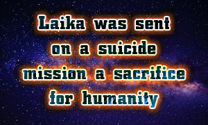 Laika was sent on a suicide mission – a sacrifice for humanity