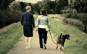 couple walking their large dog down a rural path