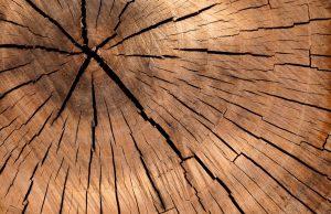 Duurzame houten vloer Hoogeveen
