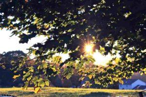 gedicht (innerlijke) vrede Beyond Mindfulness