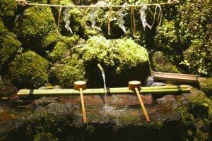 Kyoto-city-restaurants