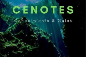 Cenotes About Pinterest 1 ES