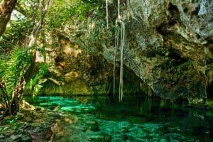 Types of Cenotes - Open Cenote (Gran Cenote in Tulum)
