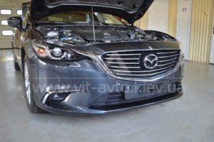 Антигравийная пленка на Mazda фото 1