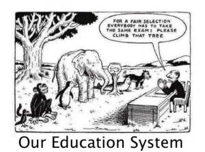 educatie-juridica