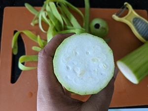Small seeds of bottle gourd
