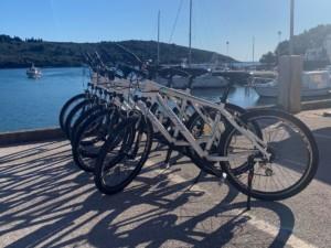 Bike rental Banjole