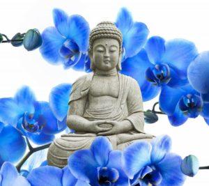Engelkarte ziehen Buda
