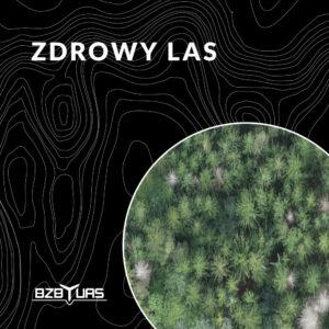 szkolenie na drona - Zdrowy las - BZB UAS