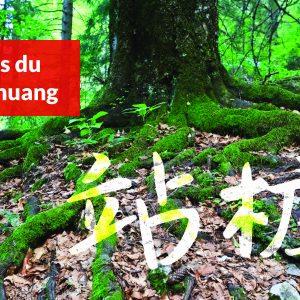3 étapes du Zhan Zhuang
