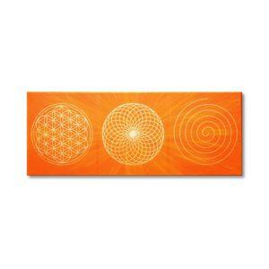 Wandbild Energiebild Energiebahnen Spirale Blume des Lebens gold orange_Frontbild