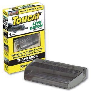 tomcat-live-catch-mouse-trap