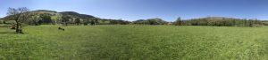 Parc Farm Caravan Park panarama