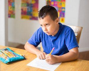 Homeschool Advantages, Homeschool Advantages-Why You Should Do Homeschooling, Family Homeschooler