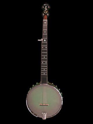 wildwood exoticwood banjo