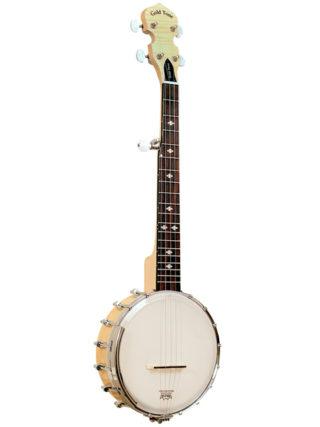 gold tone cc mini banjo