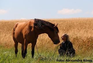 chi horsing Alexandra König