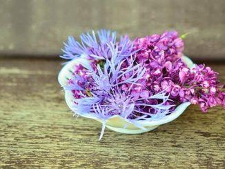 decoracion con flores frescas