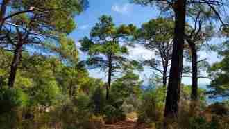 Turkey Walking Holidays, The Lycian Way East