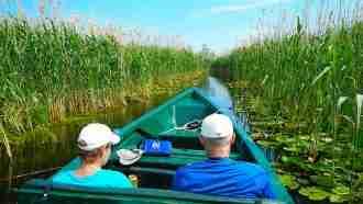 Danube Delta(1)