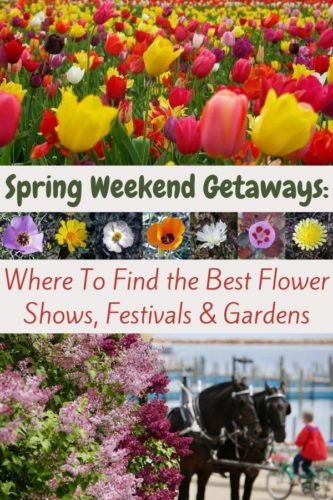 Flower shows, lilac festivals, cherry blossom festivals or just botanic gardens at the colorful best are great ideas for a quicky, easy nearby spring getaway. Here are some ideas and places to find more inspiration. #spring #weekend #getaway #ideas #flowers #shows #festivals