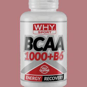 BCAA 1000 + B6 (TUTTI I FORMATI)