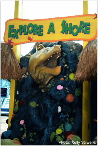This aquarium in tampa makes learning fun