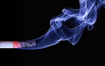 Photo of Respire con tranquilidad en el marco del Día Mundial Sin Tabaco