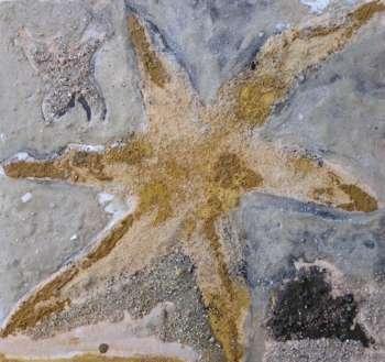 Estrella de mar. Pintura sobre madera en cursos de Barcelona