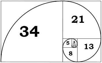 Hinh-xoan-oc-fibonacci-fx24-min