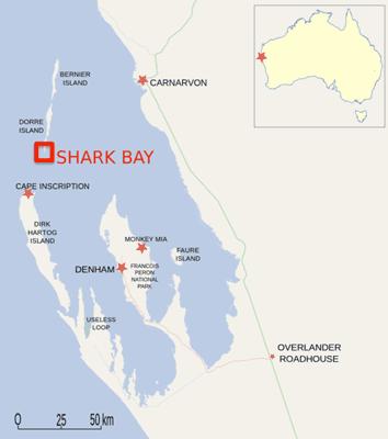 Area studied: Dorre Island and Shark Bay off the coast of Australia. Map: ESA and Wikipedia.