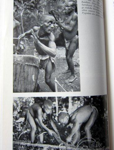 Pygmäen und Negritos - Es begann in Babel - Herbert Wendt