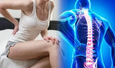 Anatomija torakalne kičme i bolovi u leđima