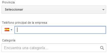 categoria google plus local