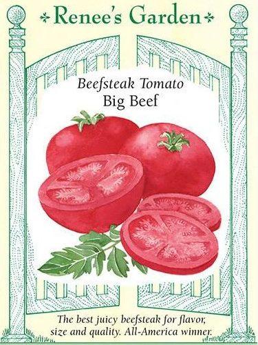 Beefsteak Tomato Big Beef